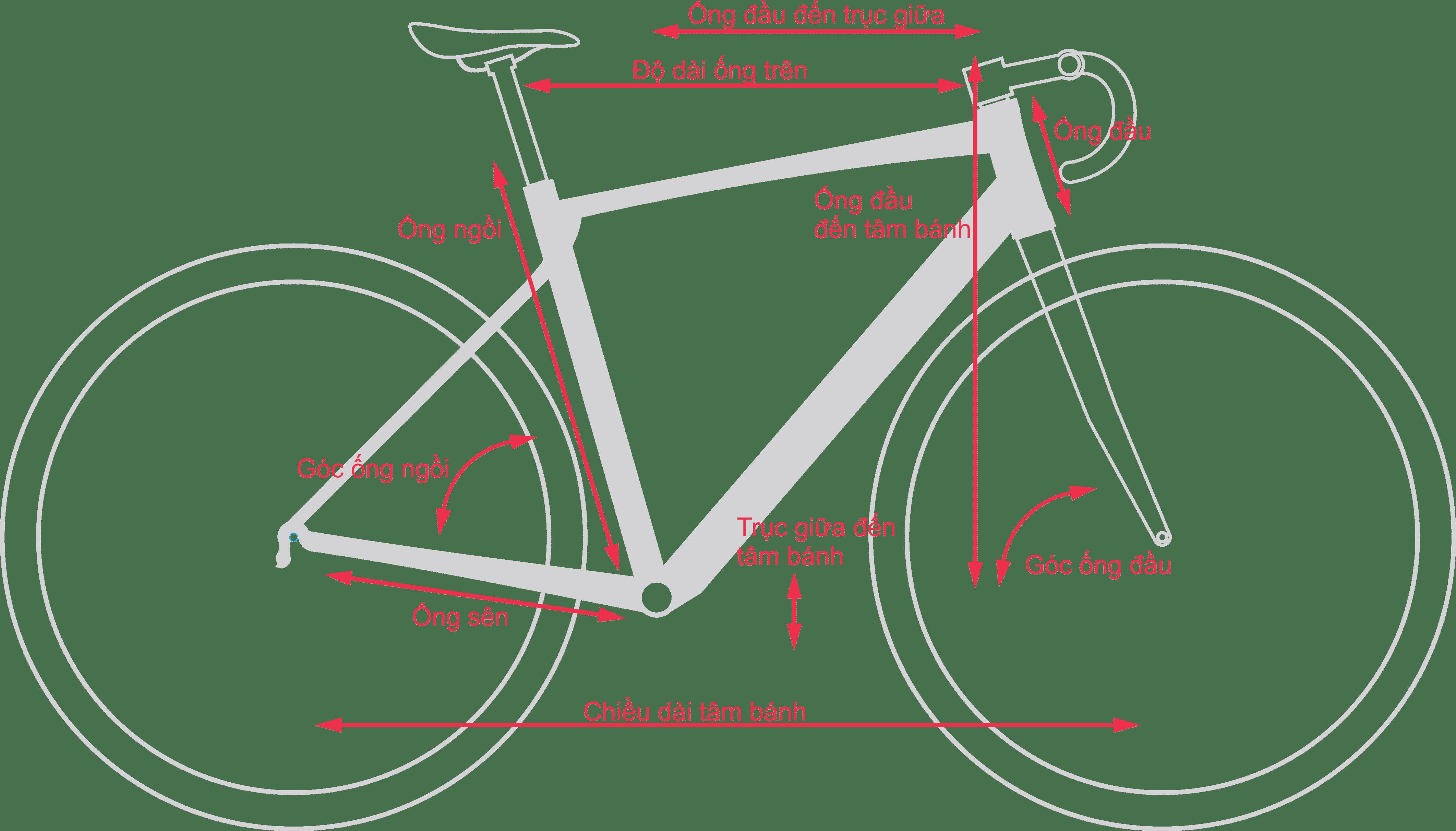 Thông số kỹ thuật xe đạp đua asama solano factory