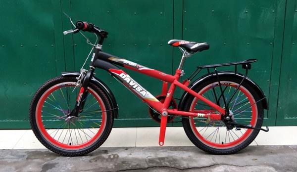 Xe đạp địa hình trẻ em Davisa D-05