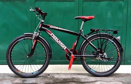 Xe đạp địa hình trẻ em Davisa V20