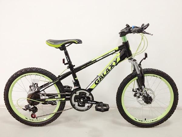 Xe đạp địa hình trẻ em Galaxy MT 219