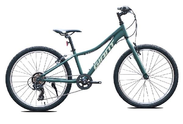 xe đạp trẻ em Xe Youth Giant XTC JR 24 Lite