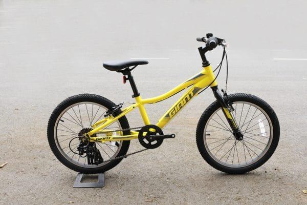Xe đạp trẻ em Youth Giant XTC JR 20 Lite