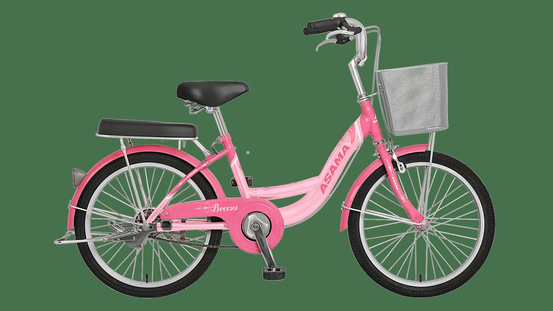 Xe đạp asama nữ màu hồng