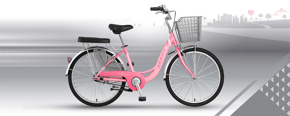 Xe đạp ASAMA BREZZE 24