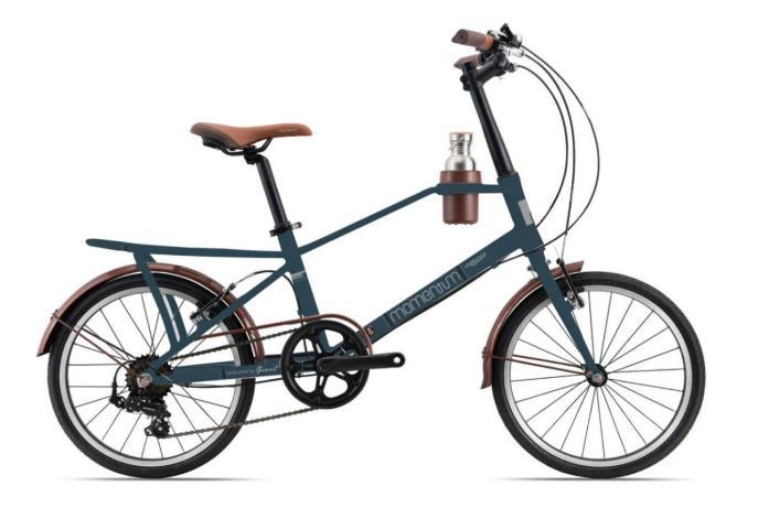 Xe đạp Giant nữ Momentum iNeed Espresso