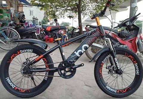 Xe đạp trẻ em Borgki Vanh 20