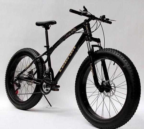 xe đạp địa hình bánh béo