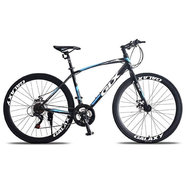 Xe đạp galaxy lp300 màu xanh dương đen