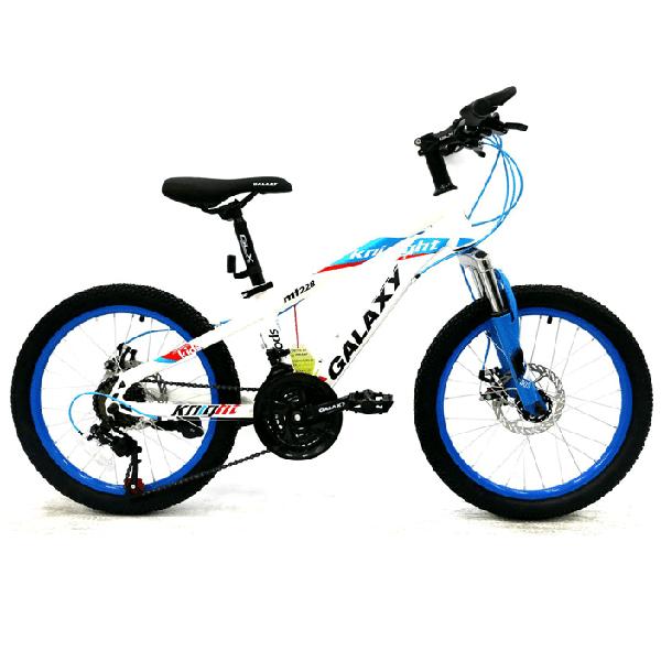 Xe đạp trẻ em galaxy mt228 màu trắng xanh dương