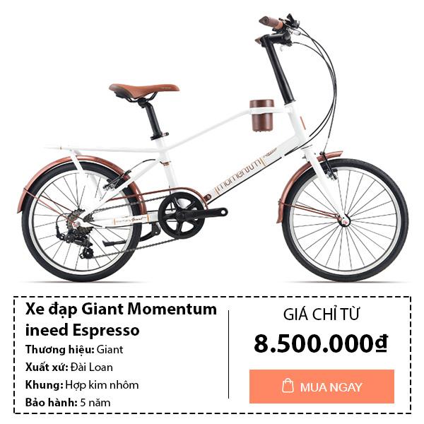 Xe đạp giant đường phố dành cho nữ momentum ineed espresso